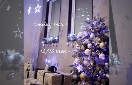いよいよ来週から!!ホワイト・クリスマス撮影会開始♫